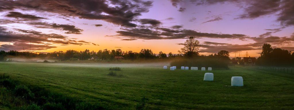 Under sena sommarkvällar när den fuktiga luften sveper in över solvarma ängar kan man fånga otroligt drömska foton. Här är ett foto taget från en bussficka.