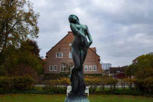 Dimman Karlshamn Perennagården - Ludwig Sörmlind