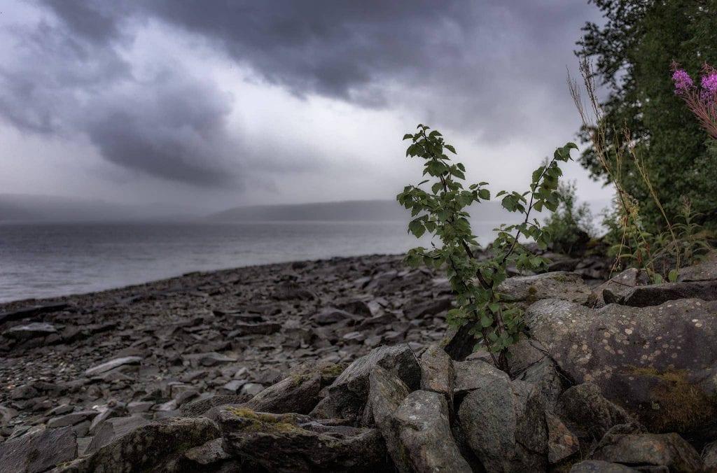 Stenstranden längs Stora Blåsjön - Ludwig Sörmlind
