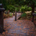 Japanska Trädgården i Ronneby Brunnspark - Ludwig Sörmlind