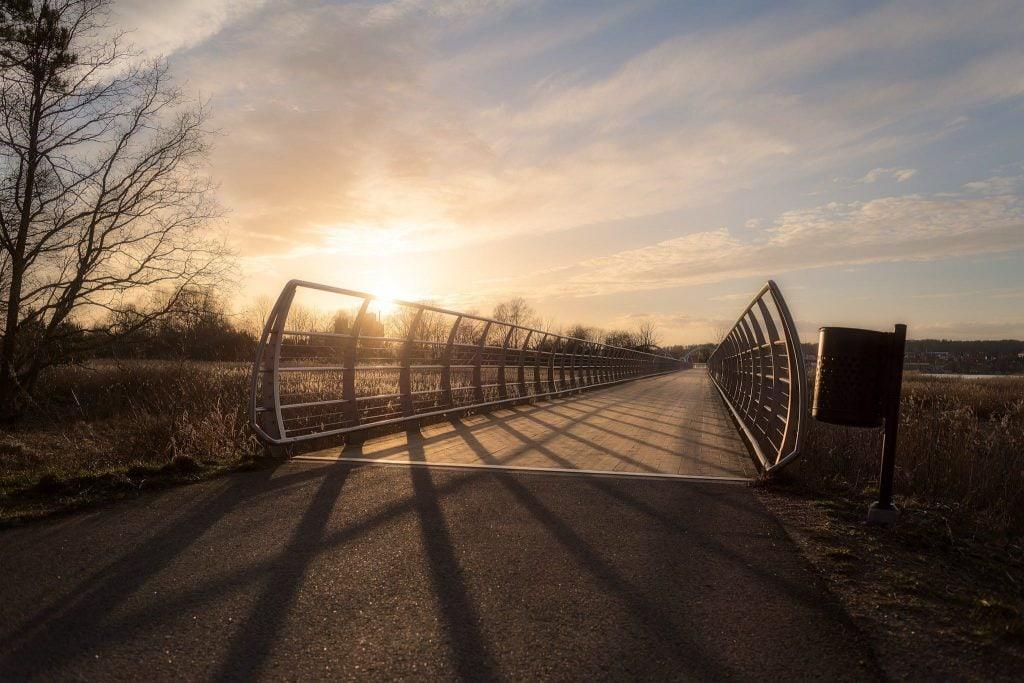 Sölvesborgsbron - Låg sol genom träden - Ludwig Sörmlind