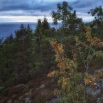 Roadtrip 2017 - Ett berg med en utsikt / Roadtrip in Sweden 2017 - A mountain with a view