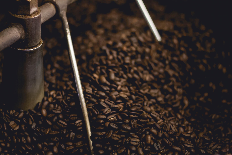 Kaffebönor - Finnarna dricker mest kaffe i världen per person och år - Ludwig Sörmlind