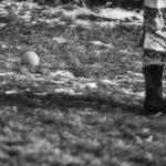 En tilltufsad gräsmatta efter en kall vinter - Ludwig Sörmlind