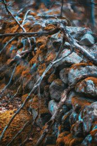 Vacker stenmur mitt i ingenstans - Ludwig Sörmlind